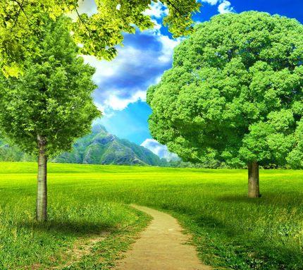 красивые картинки скачать природы