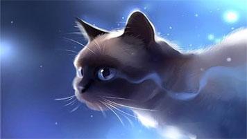 Скачать бесплатно игру про котят котов и кошек на компьютер catz 2.