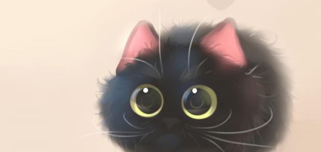 Андроид Живые Обои Кошки
