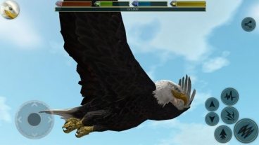Симулятор Птиц Скачать На Андроид - фото 9