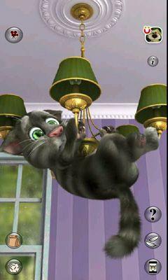 Бесплатно на андроид игру говорящий кот