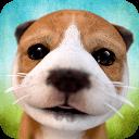 Dog Simulator / Симулятор Собаки