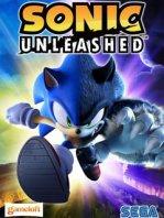 Скачать java игру Sonic Unleashed / Соник Освобожденный на телефон. Sonic Unleashed / Соник Освобожденный - шутка на транспортабельный бесплатно