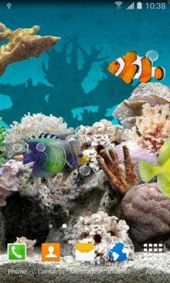 Живые обои с рыбками на андроид скачать бесплатно 1